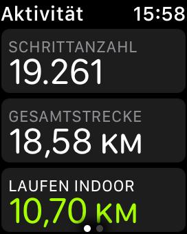 Der Schrittzähler ist natürlich inklusive, auch die per GPS ermittelte Gesamtstrecke des Tages (wobei das beim Indoor-Lauf natürlich schwierig sein dürfte...).